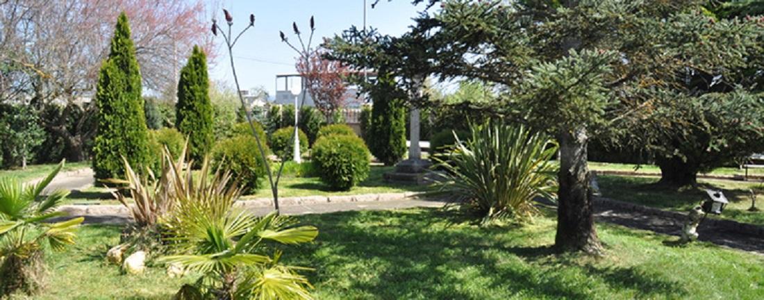 ECOBAMBÚ JARDÍN: Jardinería