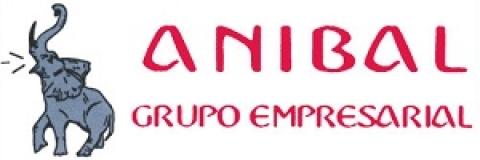 Logotipo de ANIBAL GRUPO EMPRESARIAL