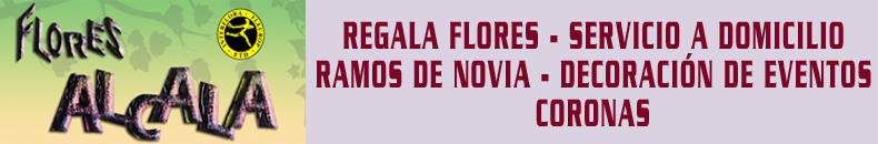 Banner IG Flores Alcala